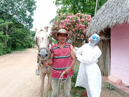 Sucre lidera vacunación contra Covid-19 por cada 10.000 habitantes