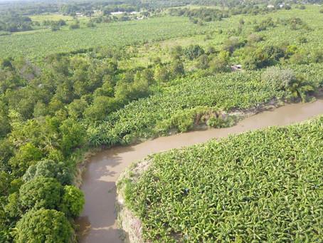 Tras amenaza de desbordamiento del río Sevilla, Magdalena adelanta trabajos de protección