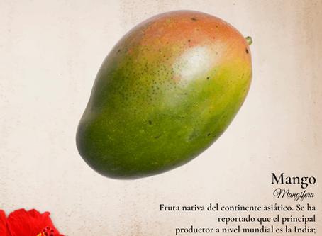 ¿Sabes de dónde provienen las frutas del Caribe?, Averígualo