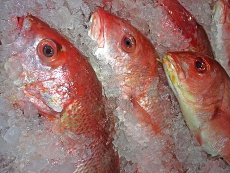 Trucos para comprar pescado fresco en Semana Santa