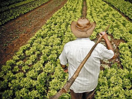 ¿Qué pasaría si nos seguimos alimentado de la forma en la que lo hacemos?
