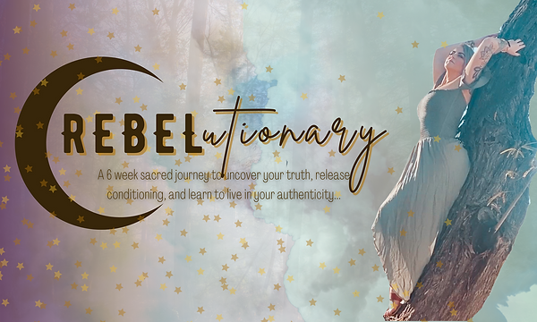 Rebelutionary banner 1.png