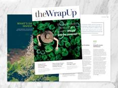 The Wrap Up.jpg