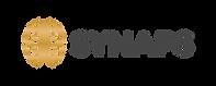 Synaps_Logo_Variegated_RGB_091216-01 (1)