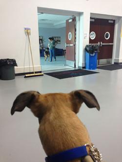 Buff Watching Girlfriend Lola