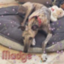 madge.JPG