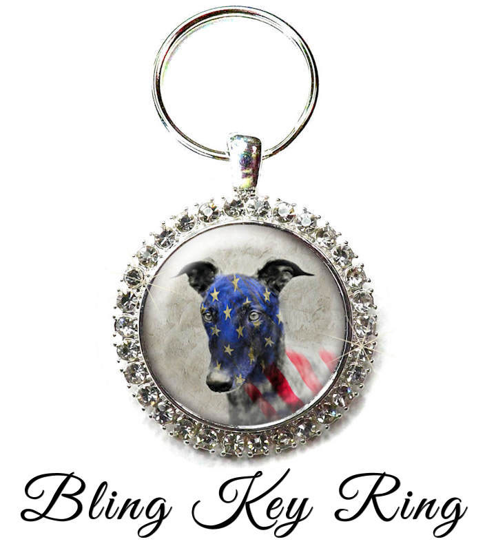 Hounds Heroes Bling Key Ring