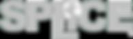 SPLiCE logo SILVER RGB.png