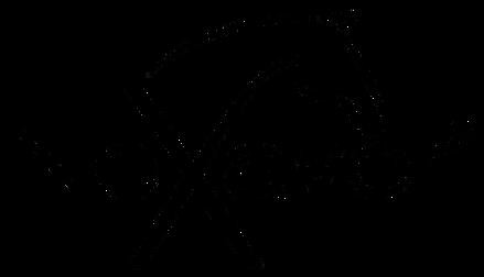neXaver_Logo_transparant.png
