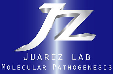 Oscar Juarez Lab