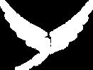 Alto Logo TSP.fw.png