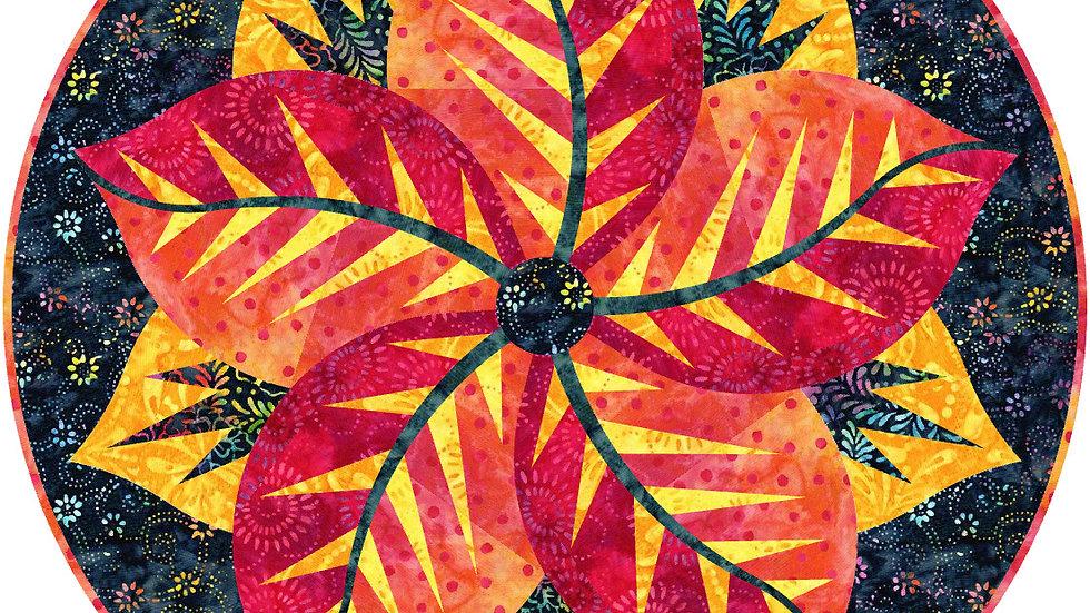 Poinsettia - Fireworks