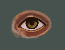 BackGround+Eye 2.png