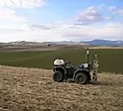 soil 1.webp