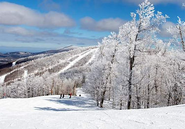 Winter-Scene-Tall-533x370.jpg