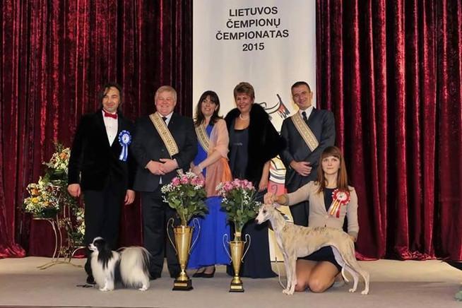 Best Lithuanian Dog