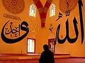islamDiger.jpg