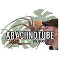 arachnotuibe.jpg