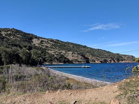 Channel Islands National Park: Day Trip to Santa Cruz Island