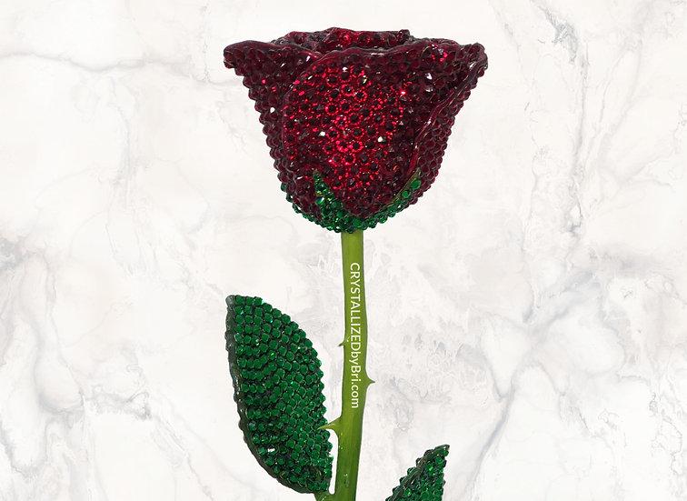 CRYSTALLIZED Natural Stem Preserved Rose