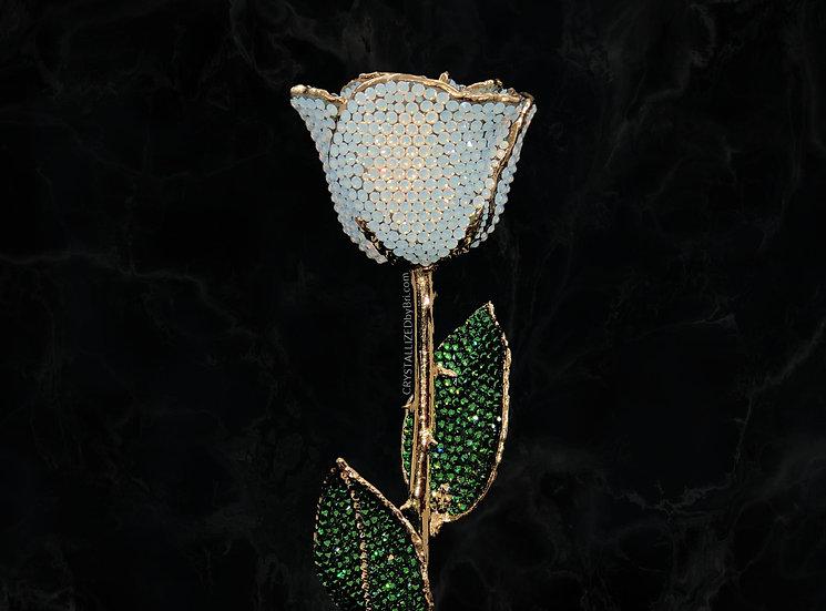 White Opal CRYSTALLIZED Preserved Rose
