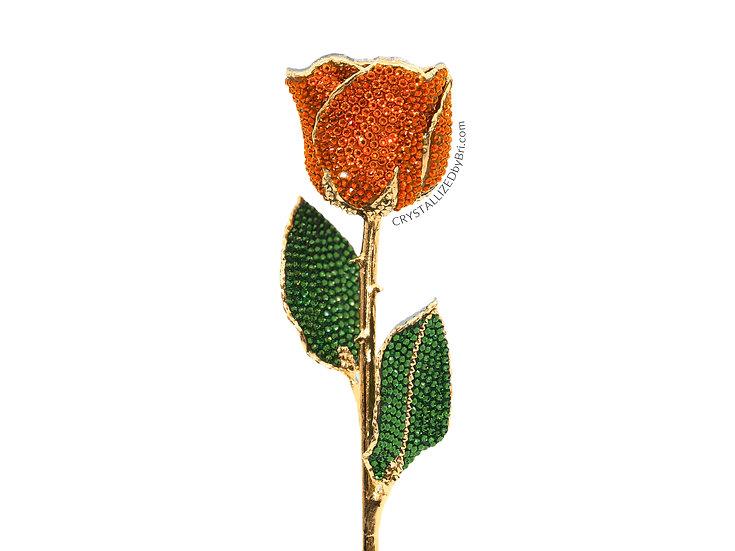 Orange CRYSTALLIZED Preserved Rose