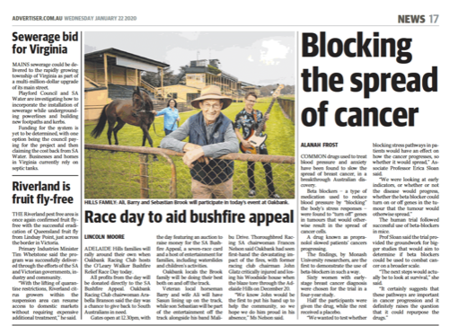 Race day to aid bushfire appeal