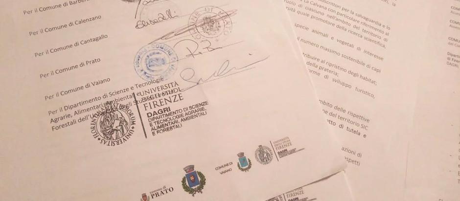 Protocollo d'intesa Salvaguardia e Sviluppo SIC Calvana