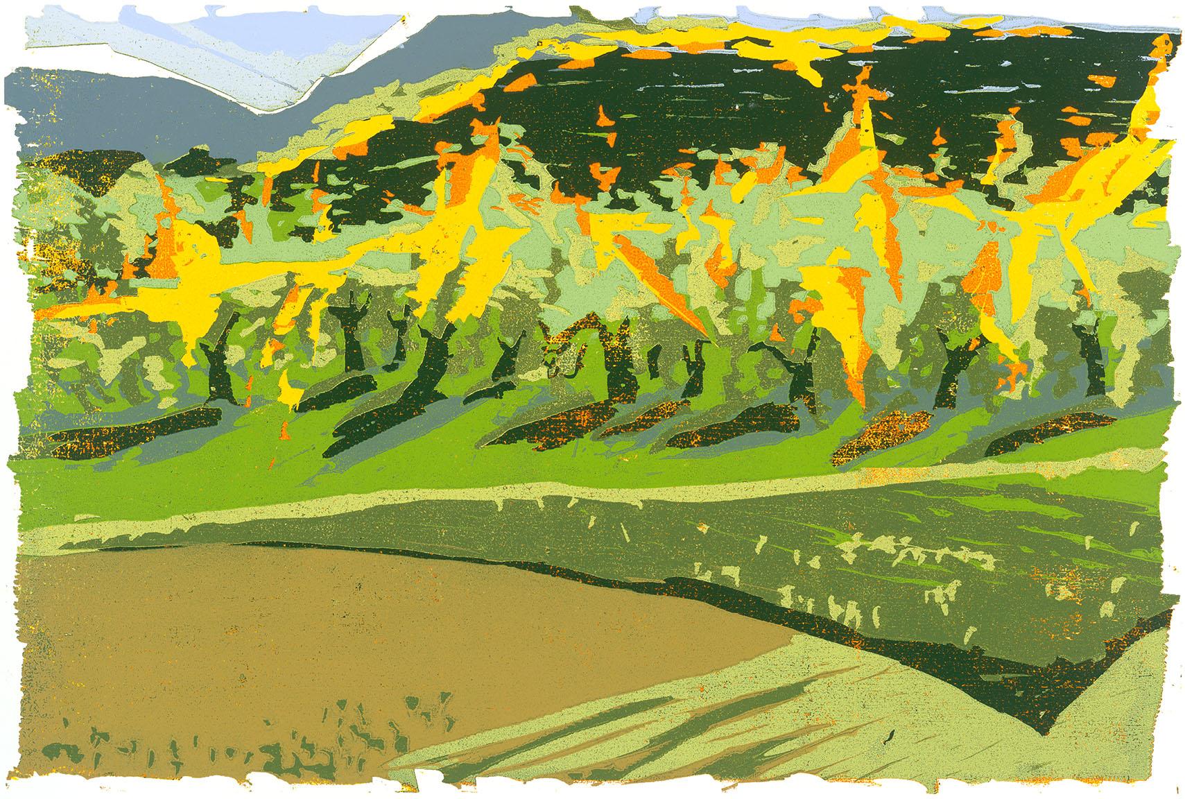 Apfelbäume_im_Sonnenlicht_(2013,_Farbholzschnitt,_40_×_60_cm).jpg