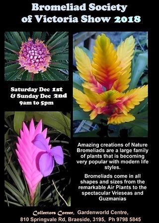 Carnivorous Plant show leaflet Brom 2017
