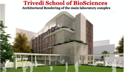 Trivedi School of Biosciences