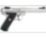 mark 4 target stainless.png