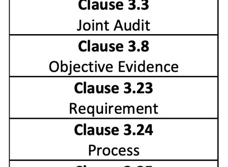 Auditing Management System per ISO 19011