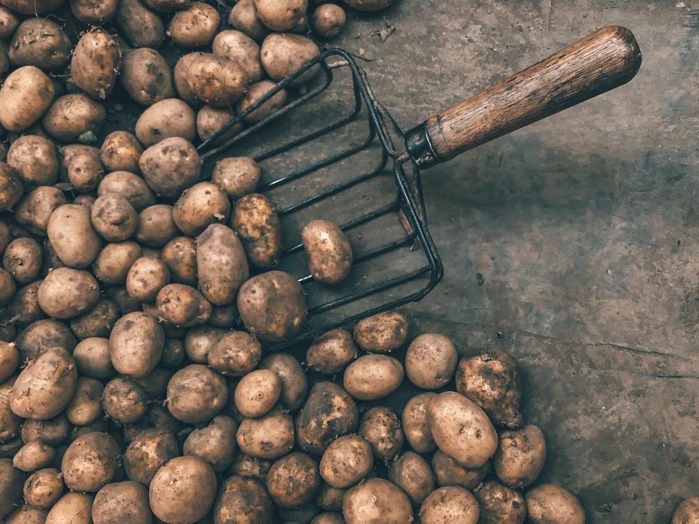 Potatoes FTW