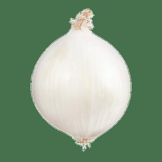 Sweet White Onion