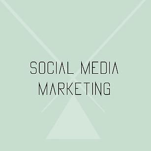 social media marketing de marketingmoolenaar.png