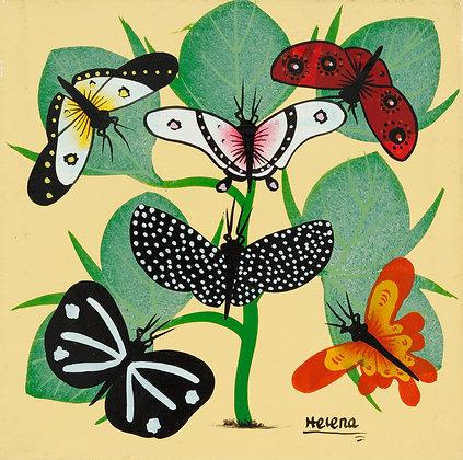 Butterfly/Grass