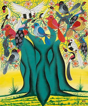 Bird/Baobab