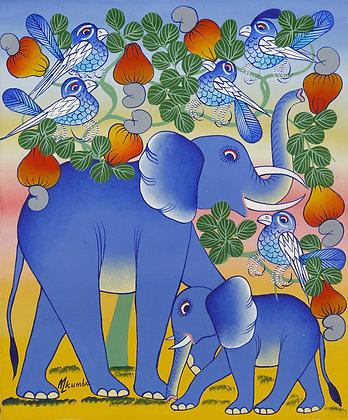 Elephant family / Bird / Cashew nuts