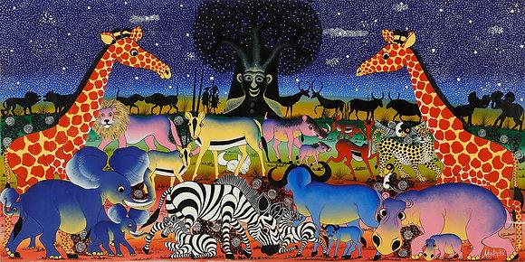 Animals/Baobab/Kilimanjaro/Starry sky
