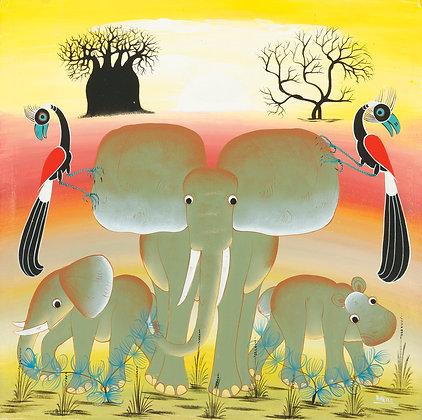 Elephant family/Baobab