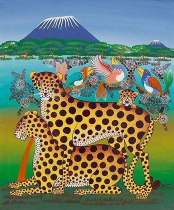 Cheetah family/Bird/Kilimanjaro