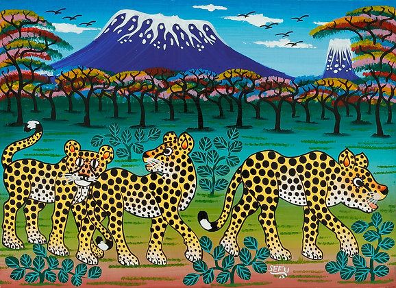 Cheetah brothers/Kilimanjaro