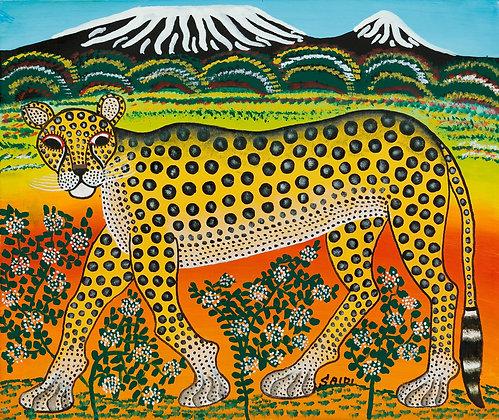 Cheetah/Kilimanjaro