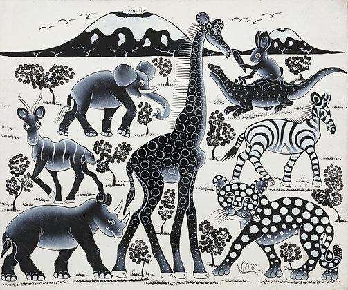 Animals / Kilimanjaro