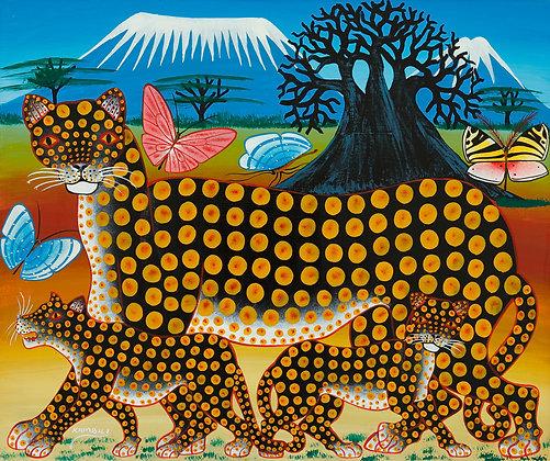 Panther family/Butterfly/Baobab/Kilimanjaro