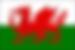 DMC Wales