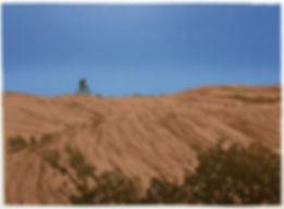RidingSlickRock.jpg
