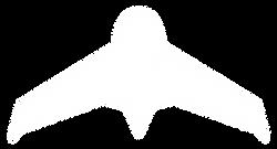 fpv.perm.ru логотип белый без тени.png
