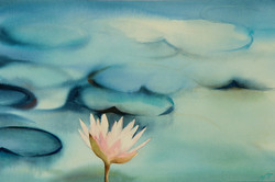 Monowaterlily